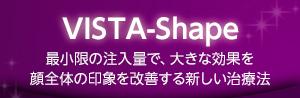 VISTA‐Shape(しわ、たるみ など)